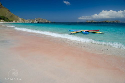 Pink Beach Komodo Water