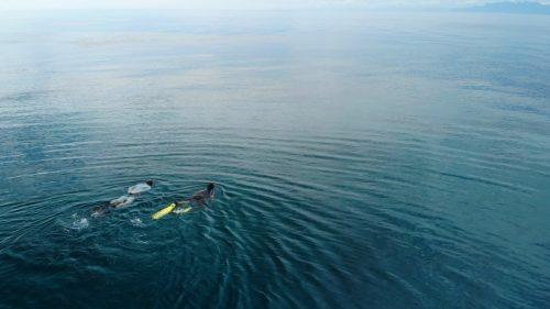 Drift Snorkel