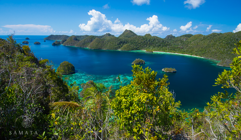 Wayag Lagoon
